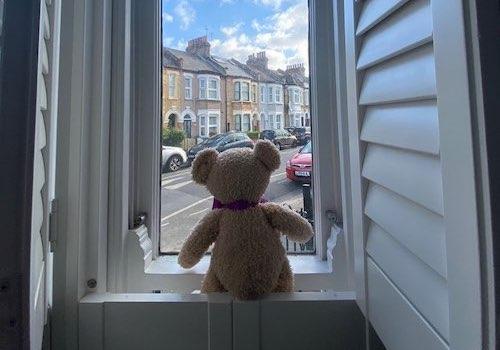 Good News: Teddy Bear Hunts